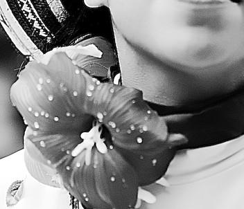 Fiore Colombiano