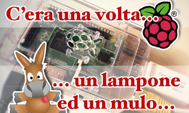 Il mulo (amuled) ed il lampone (Raspberry Pi)